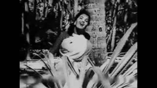 Musafir Khana - Dil De Dala Nazrana