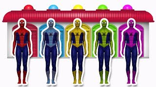 Learn Colors With Spiderman | Learn Colors Collection Video For Kids