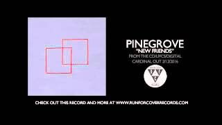 Pinegrove - New Friends