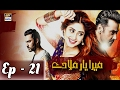 Download Video Download Mera Yaar Miladay Ep 21 - ARY Digital Drama 3GP MP4 FLV