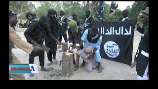 Boko Haram Series