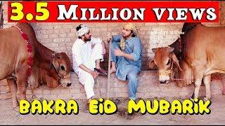 Bakra Eid mubarik  l Peshori vines Official