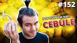 5 sposobów na... CEBULE - Gościnnie: Rafał Masny