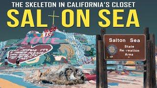 The Salton Sea: The Skeleton in California