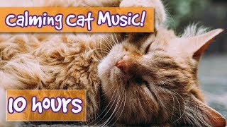 Music with Sound Effects for Cats! Suckling, Purring and Nature Sounds and Music to Comfort Cats! 🐈