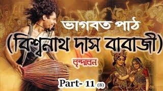 Bhagavat Pat Bangla । Bishonath Das Babaji (Vrindavan) । Part 11 (B)