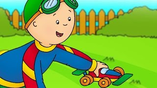 Funny Animated cartoon for Kids | Cartoon | Caillou