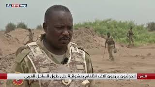 اليمن : وحدات الهندسة السودانية تعمل على نزع الألغام من الساحل الغربي