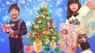サンタさんから クリスマスプレゼント こうくんねみちゃん Christmas present Santa Claus