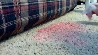 How to Remove a Red Kool Aide Stain from Carpet
