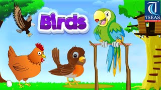 Learn Types of Birds | Animated Video For Kids | English Animation Video For Children