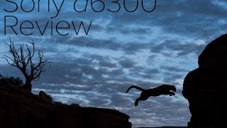 Sony a6300 Review - The best camera for $1000?