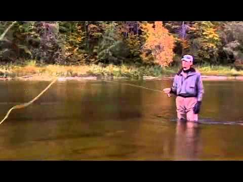 рыбалка на дунайце