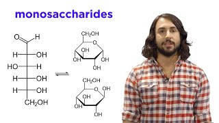 Carbohydrates Part 1: Simple Sugars and Fischer Projections