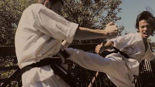 Black Belt Taekwondo/Karate Style Fight Scene