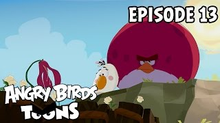 Angry Birds Toons - Gardening with Terence (Ep13 S1)