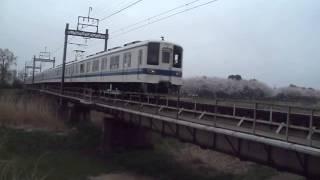 東武野田線8000系桜をバックに快走