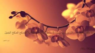 قران كريم صوت جميل  قراءة هادئة 2016
