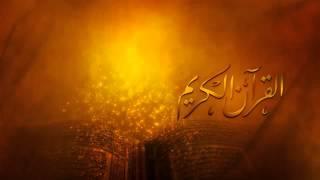 القارئ _ صلاح بو خاطر - سورة العنكبوت - YouTube.WEBM