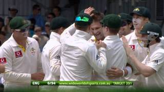 Ryan Harris 6-47 3rd Test, Perth, 2010-11 Ashes Series