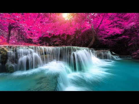 Music for Sleeping, Soothing Music, Stress Relief, Go to Sleep, Background Music, 8 Hours, ✿3156