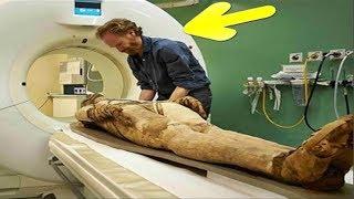 هل تعلم ماذا حدث للعالم الفرنسي الذى شرح فرعون