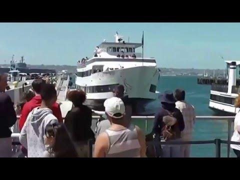 Kapal Pesiar Nyosor Jembatan, 7 orang Turis Terluka