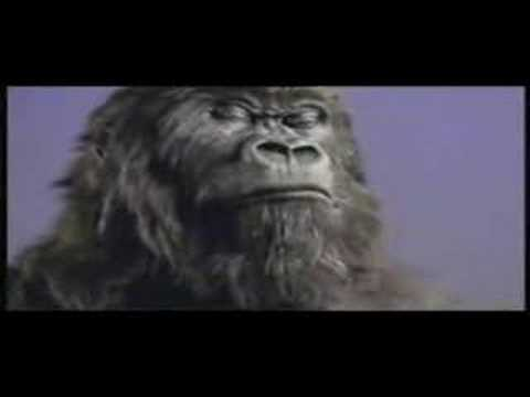 Cadbury Gorilla In The Air Tonight Extended Mix
