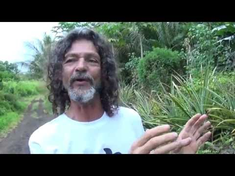 Big Island Hawaii Cinderland Eco-Village Jezus Interview 3 o 27
