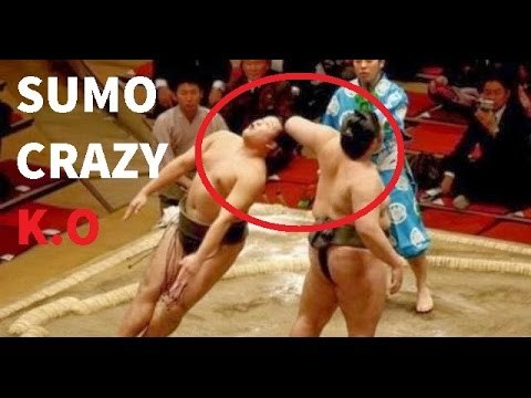 Xxx Mp4 Sumo Wrestling Brutal And Best Knockouts Compilation 3gp Sex