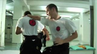 Long Zentren Wien, Wing Chun Kung Fu, Qi Gong, Wu Shu, Christoph Weingessel
