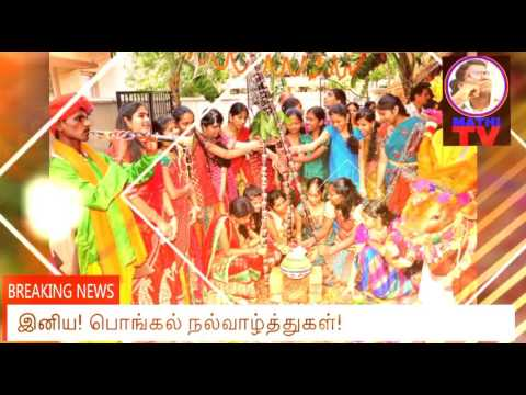 Xxx Mp4 Pongal Valththu Padal 2017 3gp Sex