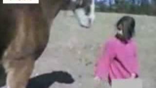 Horse Vs Girl