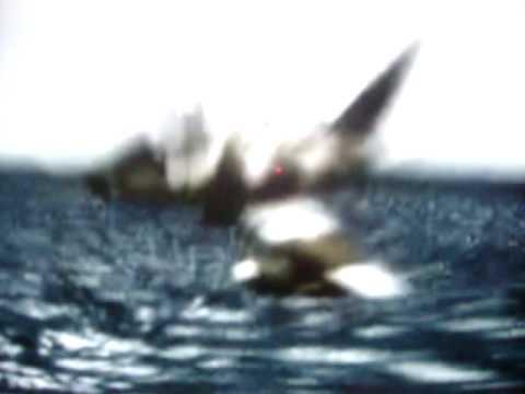 Ataque al porta aviones ingles ``El Invencible´´ en Malvinas.