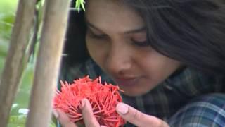 Episode 265: Akila Telugu TV Serial - AVM Productions