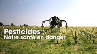 Cash Impact - Pesticides : notre santé en danger (Intégrale)