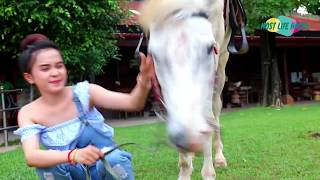 A Horse $20,0000 /A Girl And A Horse / How To Teach Your Training Horse Lay Down # Training Ep 095