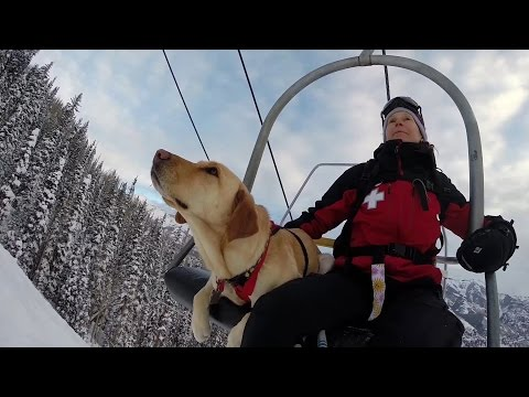 GoPro Awards Telluride Avalanche Dogs