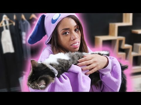 BOZE BECOMES ONE WITH THE CATS