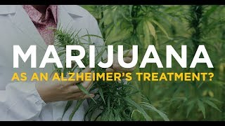 Marijuana Found To Be Effective In Treating Alzheimers