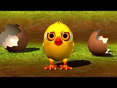 El Pollito Pío 3D Canciones de la Granja 2