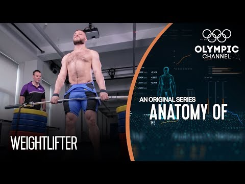 Anatomy Of a Weightlifter What are their Biggest Strengths