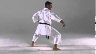 6. Seiunchin Goju Ryu