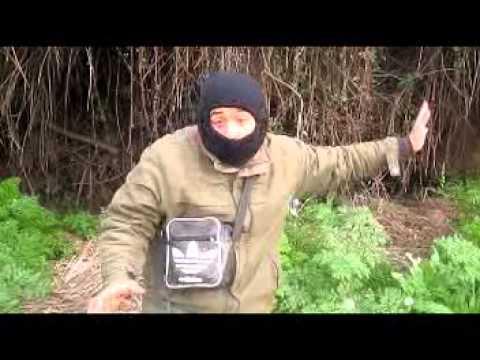caza de codorniz y tortola la palma talagante
