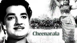 Cheenavala 1975: Full Malayalam Movie | Prem Nazir, Jayabharathi | Old Malayalam Movie