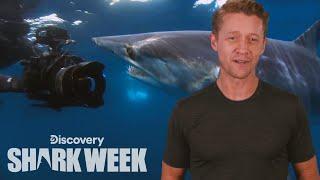 The Best Shark Paparazzi | Shark Week's The Daily Bite