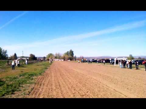 Carrera de la maruflys vs. La waka yakima WA.
