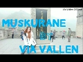 Download Via vallen - muskurane dangdut version d viva