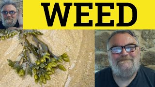 Weed Seaweed Weed Out, Meaning Examples, Vocabulary CPE CAE IELTS - ESL British English