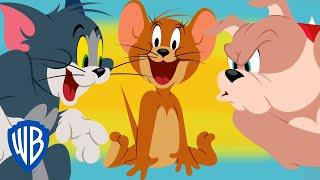 TOM & JERRY | TOM VS SPIKE | CARTOONS FOR KIDS